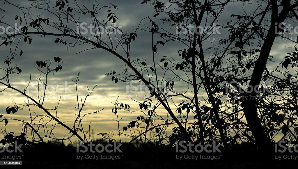 suggestive sunset royalty-free stock photo