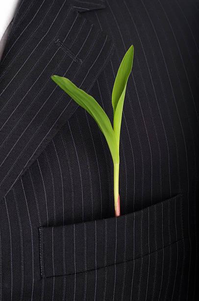 anzug neuen plant - gemüsenudelschneider stock-fotos und bilder
