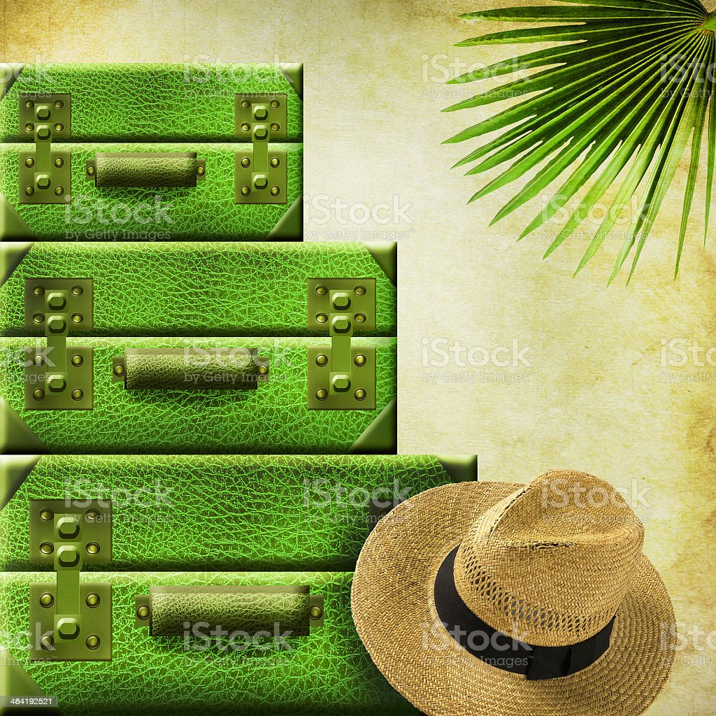 Suitcases with hat and palm leaf stock photo