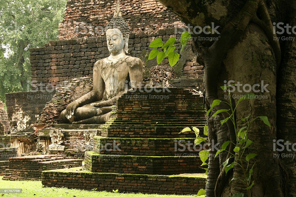 Sukhothai jungle temple ruins buddha royalty-free stock photo
