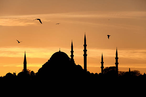 Suleymaniye Mosque, Istanbul Turkey stock photo