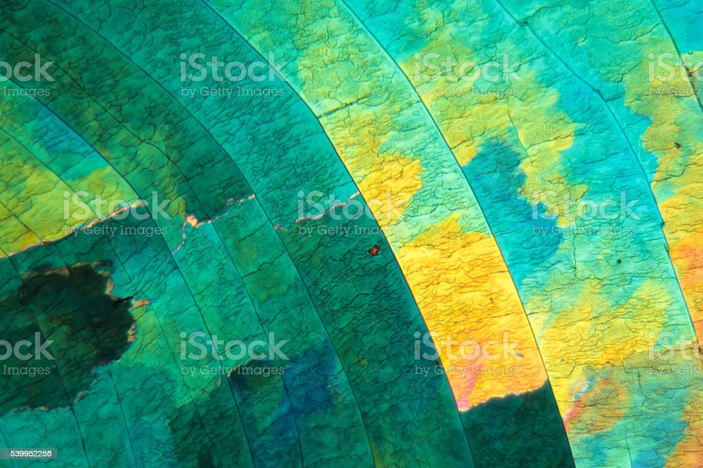 Sulfur crystals under the microscope stock photo