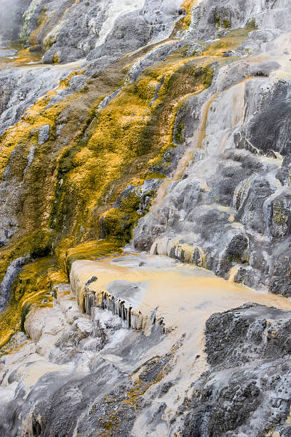 sulphur geyser falls - spring stock photos and pictures