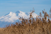 Sultan Reedy National Park and Mount Erciyes