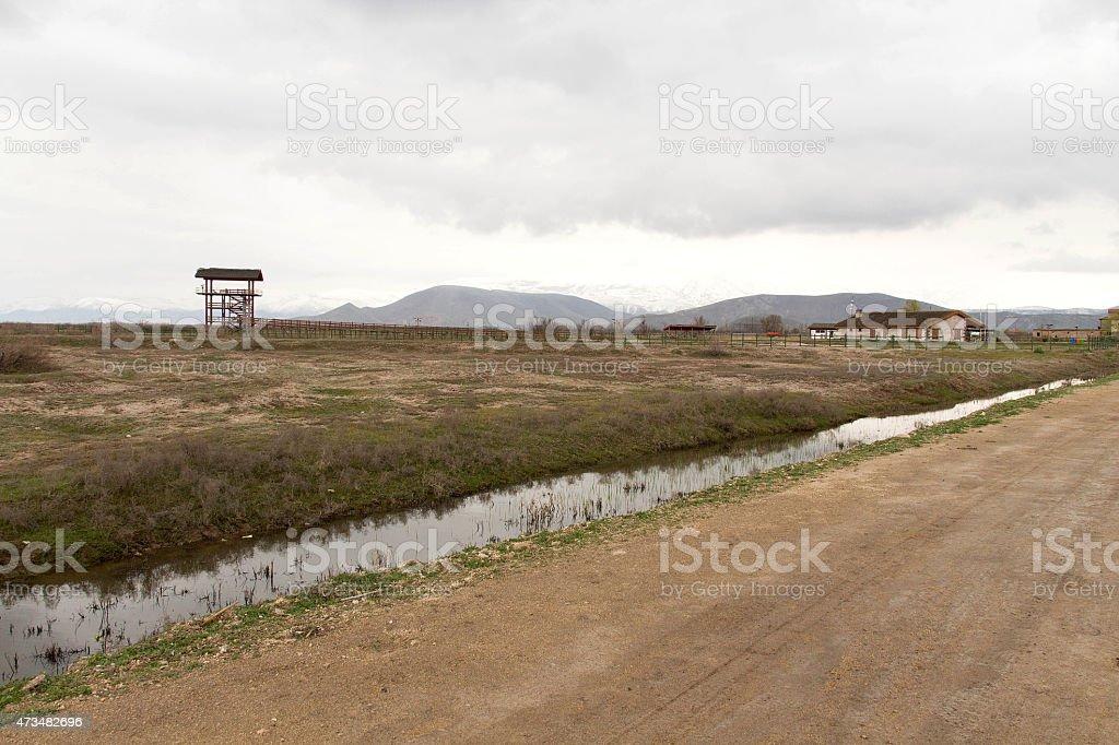 Sultan Sazlığı bird Sanctuary stock photo