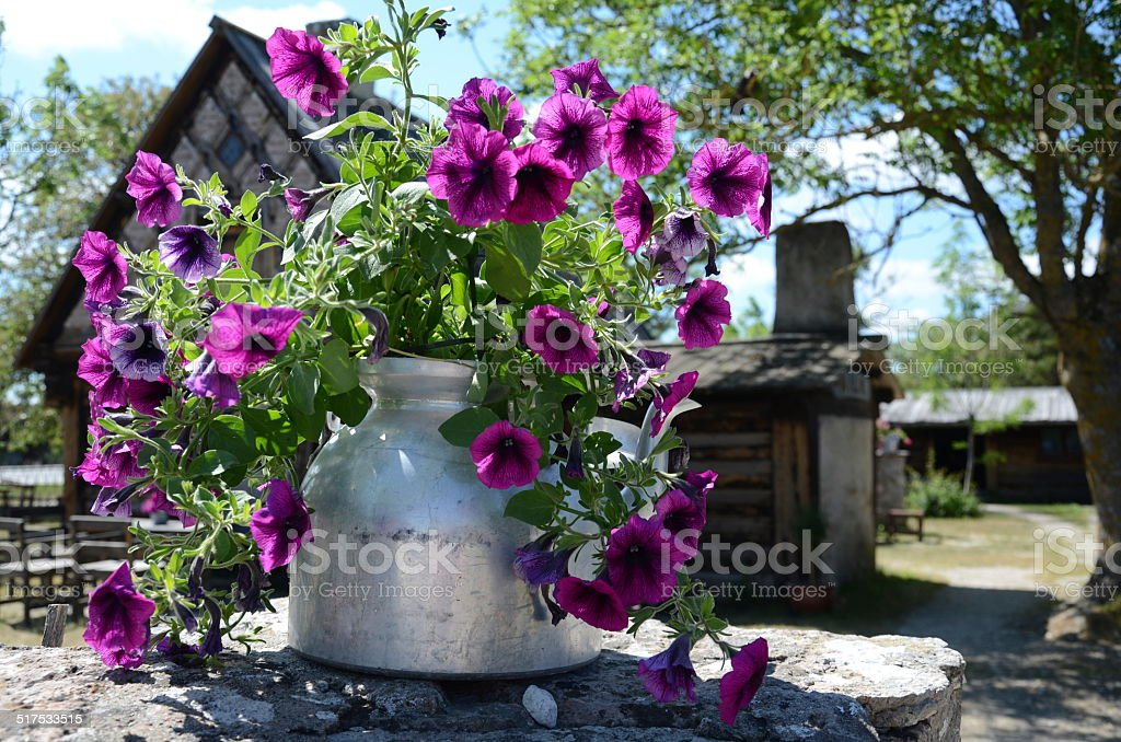 Summer and Flowers stock photo
