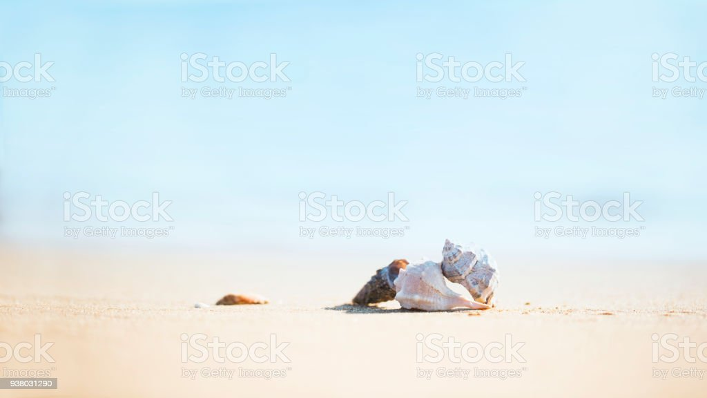 summer and holiday stock photo