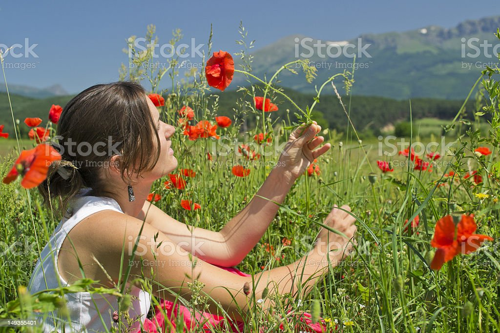 Summer and poppies royalty-free stock photo