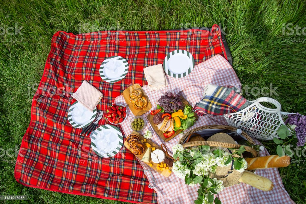 Beautiful picnic on nature and green grass with a red checkered...