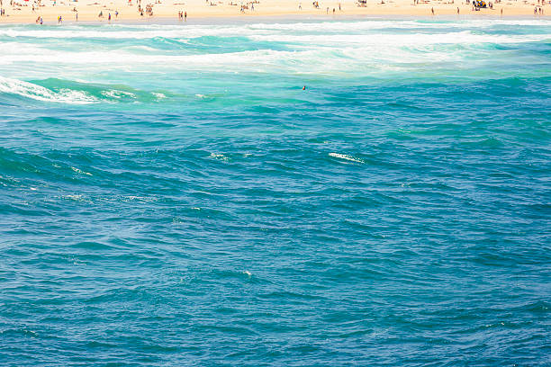 Panorama Of Bondi Beach On A Hot Sunny Summer Day With