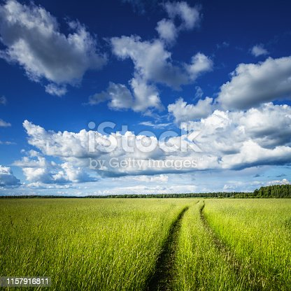 Summer at the countryside. Road through the green field under blue sky