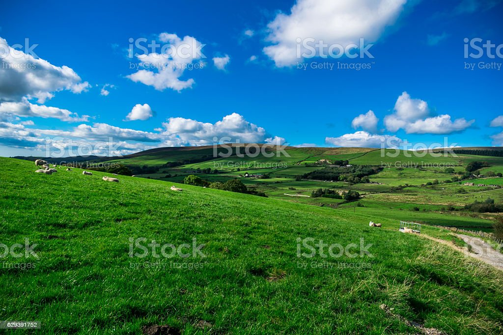 Summer at West Pennines stock photo