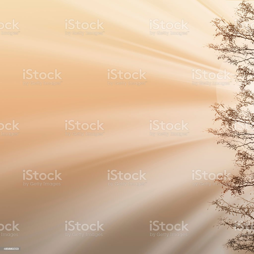 Summer backgound royalty-free stock photo