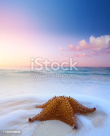 istock summer background concept; summer vacation dream 1155508606