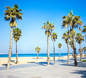 summer background - promenade, beach, palms and blue sky