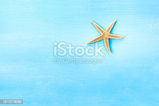 699960484 istock photo summer background with free copy space 1012278292