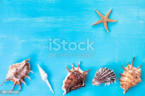 699960484 istock photo summer background with free copy space 937154020