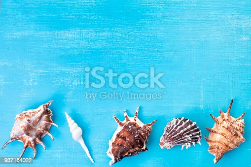 699960484 istock photo summer background with free copy space 937154022