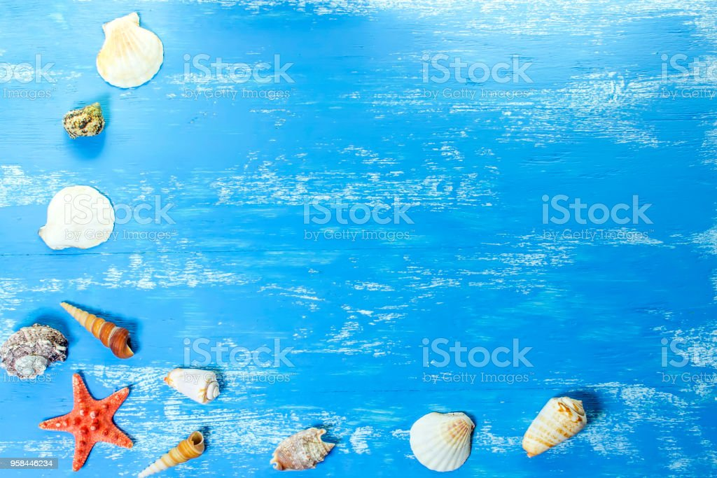 Summer background with sea shells and red star on blue wooden planks. Copy space. Marine theme stock photo