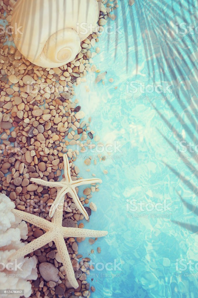 Summer background with stones and starfish stock photo