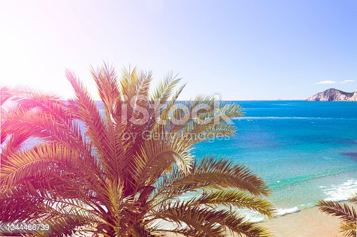 Summer beach - palm tree, rock, white sand, sea water, tropical nature