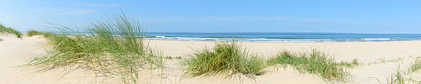 summer beach panorama - sand dune stock photos and pictures