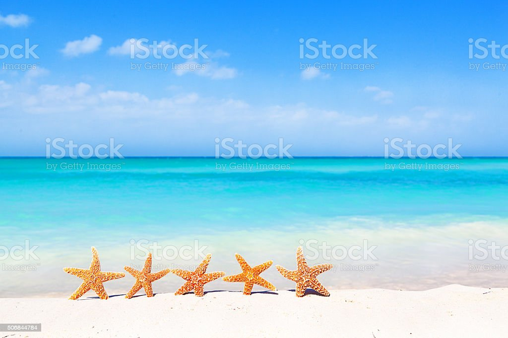 Summer Beach Vacation Holiday, Seashells Starfishes Party on Sand stock photo