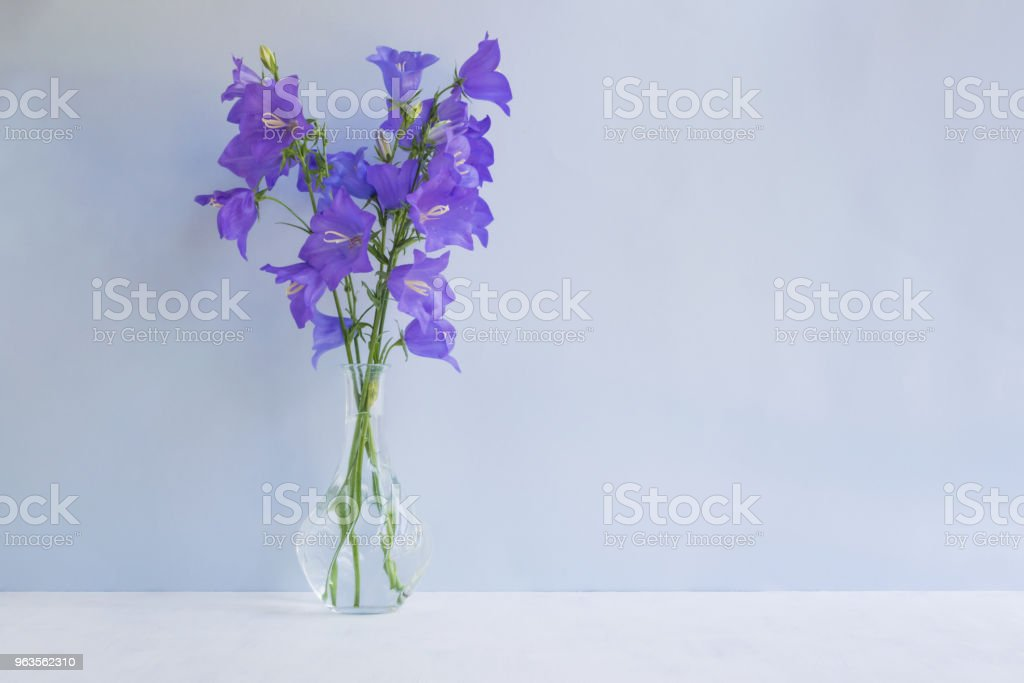 Summer Blue Flowers In A Vase On A Light Blue Background Stock Photo Download Image Now Istock