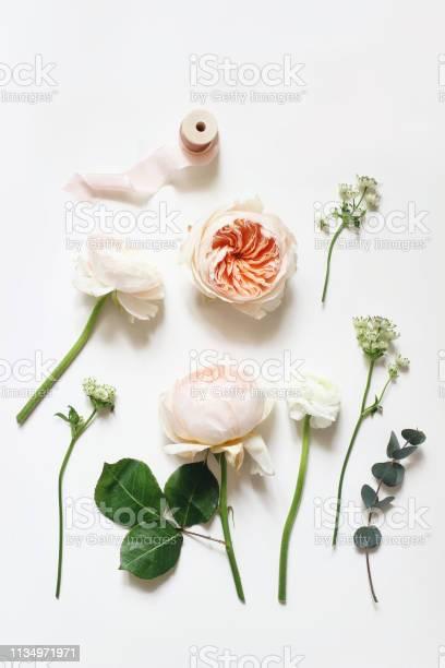 Summer botanical floral composition apricot english roses ranunculus picture id1134971971?b=1&k=6&m=1134971971&s=612x612&h=5 7f6i61ng6xpb11lzc1okgtz1kqhi0j2opbnzsws2u=
