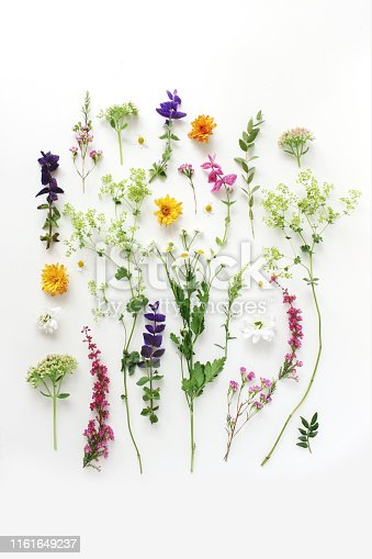 Summer botanical pattern. Floral composition of fewerfew, erica, sage and chrysanthemum flowers and green alchemilla plants on white wooden background. Styled stock photo, flat lay, top view, vertical
