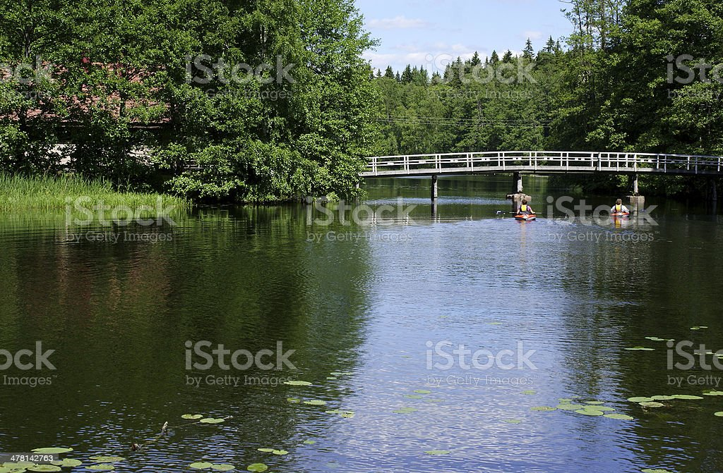 Summer by a lake stock photo