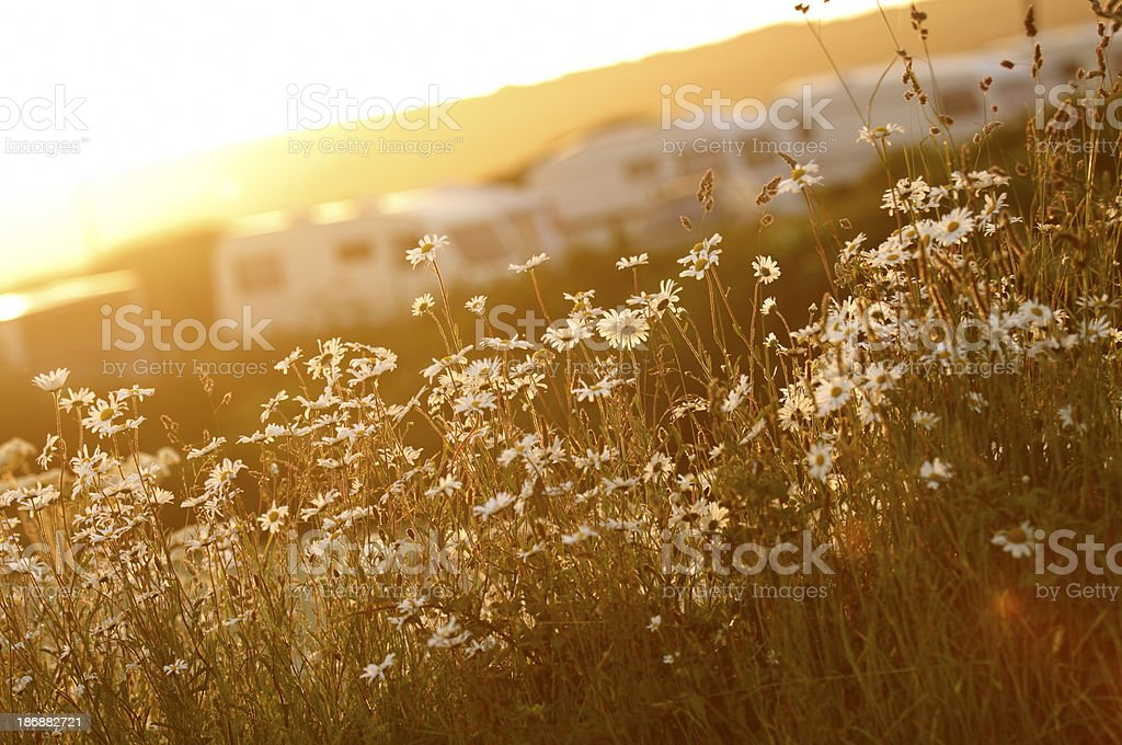 summer caravan and camping in Cornwall royalty-free stock photo