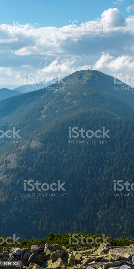 Summer Carpathian mountain view stock photo