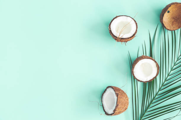 Summer composition. Coconut, palm leaf on mint background. Summer concept. Flat lay, top view, copy space stock photo