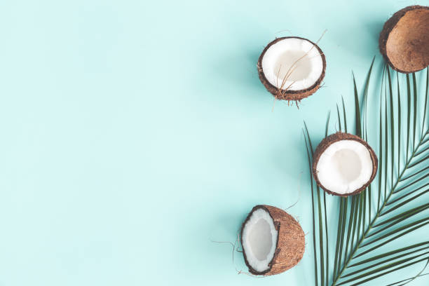 summer composition. coconut, palm leaf on pastel blue background. summer concept. flat lay, top view, copy space - coconut oil stock pictures, royalty-free photos & images