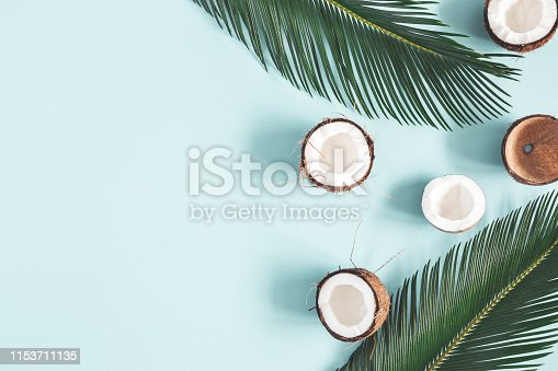 istock Summer composition. Coconut, palm leaf on pastel blue background. Summer concept. Flat lay, top view, copy space 1153711135