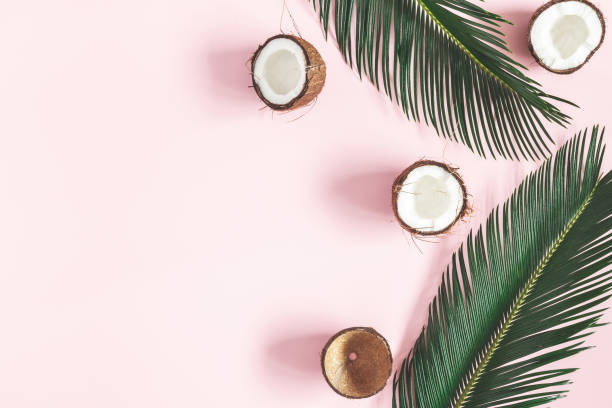 Summer composition. Coconut, palm leaf on pastel pink background. Summer concept. Flat lay, top view, copy space Summer composition. Coconut, palm leaf on pastel pink background. Summer concept. Flat lay, top view, copy space coconut oil stock pictures, royalty-free photos & images