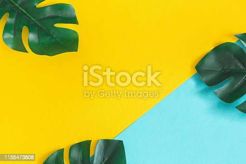 Summer composition. Monstera leaves on colorful background. Summer concept. Flat lay, top view, copy space
