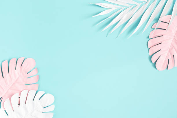 Summer composition. Palm leaves on blue background. Summer concept. Flat lay, top view, copy space stock photo