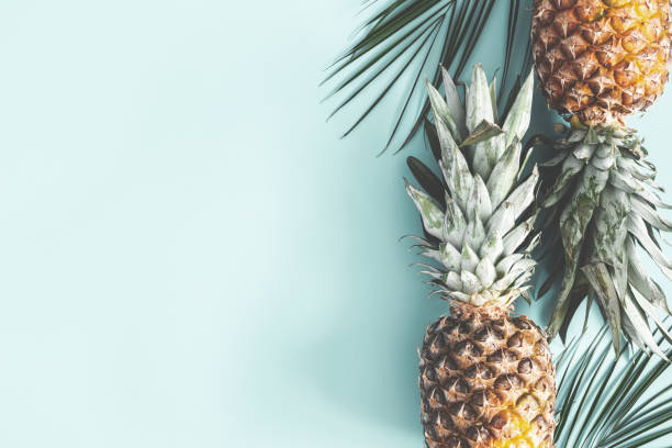 summer composition. pineapple, palm leaves on pastel blue background. summer concept. flat lay, top view, copy space - ananas zdjęcia i obrazy z banku zdjęć