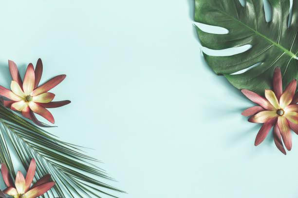 夏季作文。熱帶的花朵和葉子在柔和的藍色背景。夏季理念。平面佈局、頂部視圖、複製空間 - 熱帶式樣 個照片及圖片檔