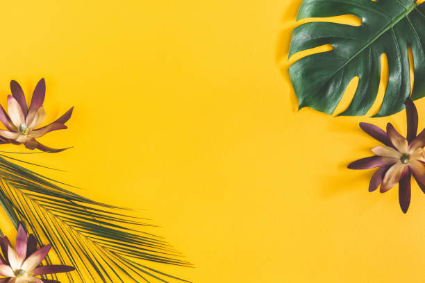 Summer composition. Tropical palm leaves and flowers on yellow background. Summer concept. Flat lay, top view, copy space stock photo