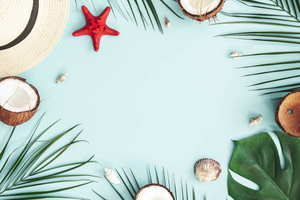 Summer composition. Tropical palm leaves, hat, coconut on pastel blue background. Summer concept. Flat lay, top view, copy space stock photo