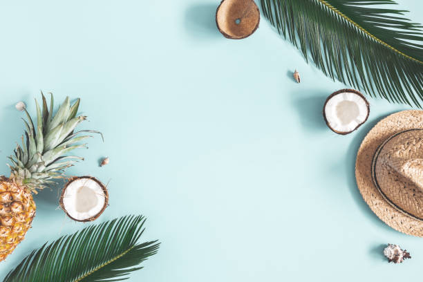 Summer composition. Tropical palm leaves, hat, fruits on blue background. Summer concept. Flat lay, top view, copy space stock photo