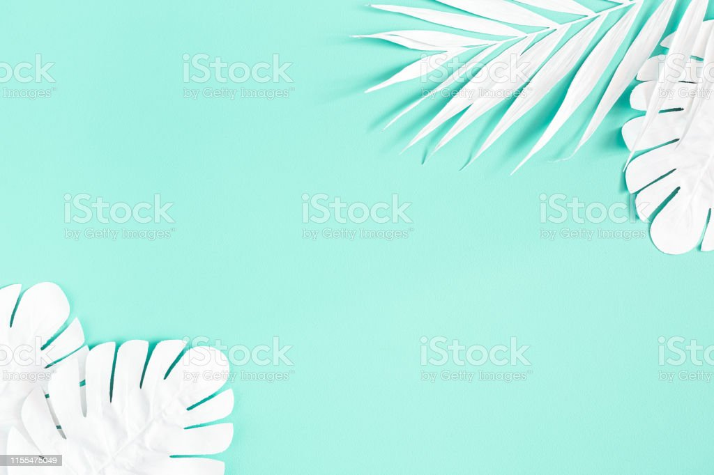 Summer composition. White palm leaves on mint background. Summer concept. Flat lay, top view, copy space Summer composition. White palm leaves on mint background. Summer concept. Flat lay, top view, copy space Above Stock Photo