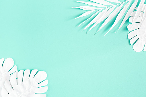 Summer Composition White Palm Leaves On Mint Background Summer Concept Flat Lay Top View Copy Space Stock Photo - Download Image Now