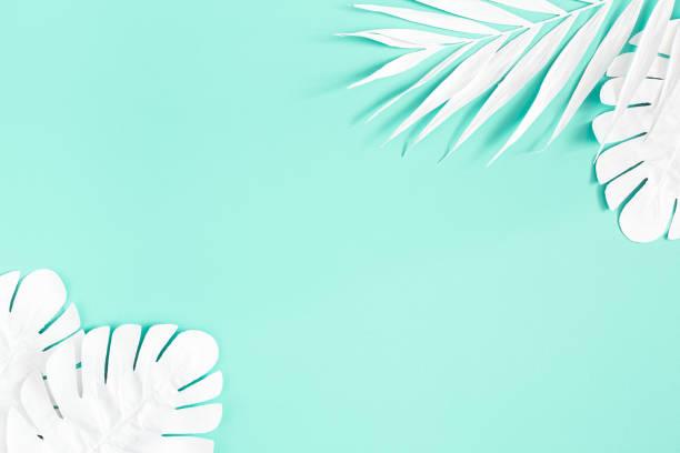 夏季組成。薄荷背景上的白棕櫚葉。夏季概念。平鋪,頂視圖,複製空間 - 熱帶式樣 個照片及圖片檔