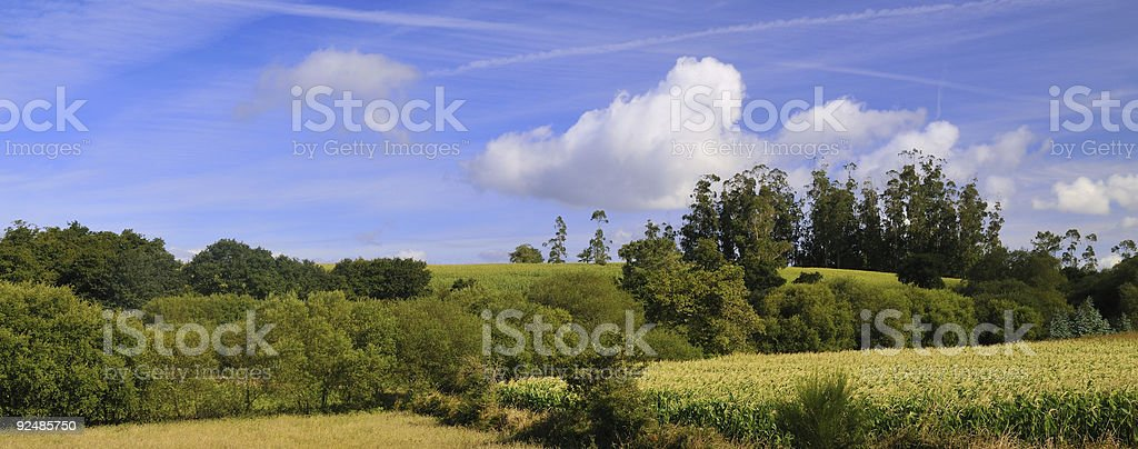 Summer country scene royalty-free stock photo