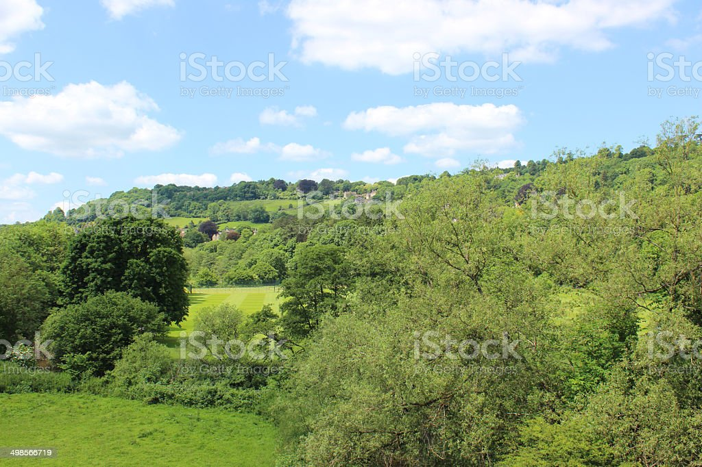 Summer countryside views of trees, fields and hedgerows, blue sky stock photo