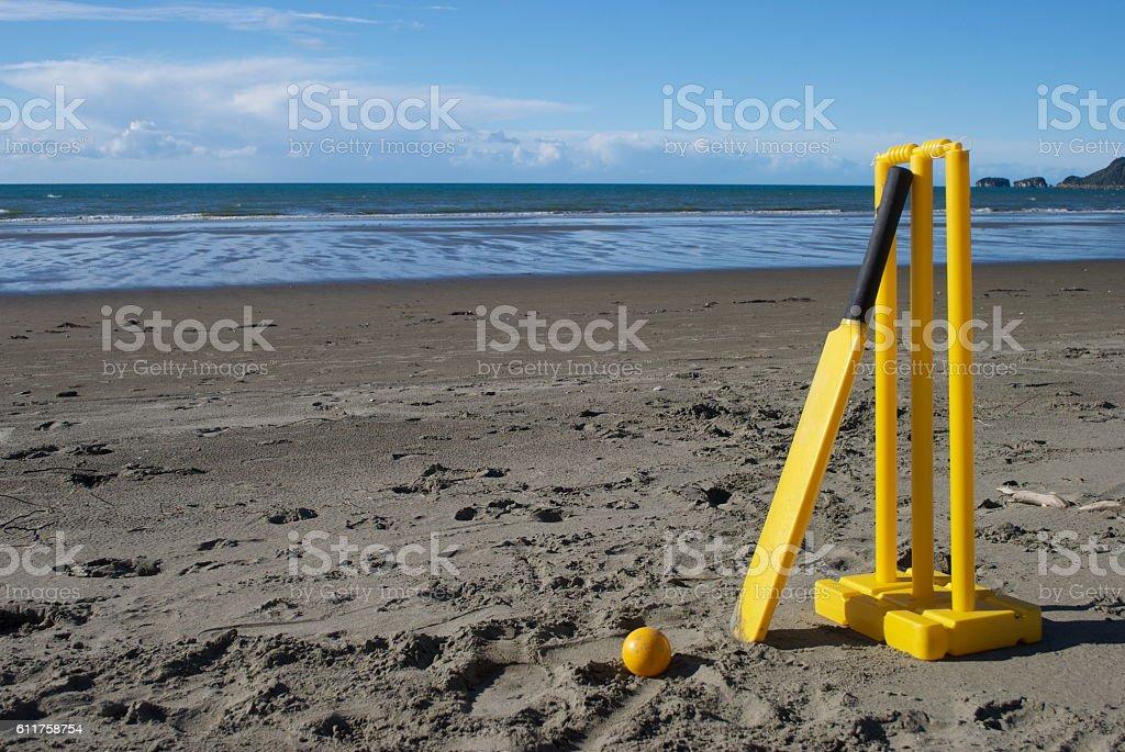 Summer Cricket on the Beach stock photo